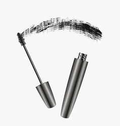mascara brush strokes vector image