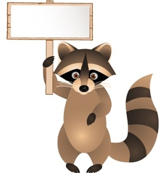 raccoon cartoon with blank sign vector image