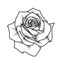 Rose tattoo art vintage vector