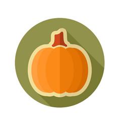pumpkin flat icon vegetable vector image vector image