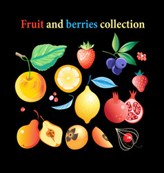 set of bright tasty fruits and berries vector image