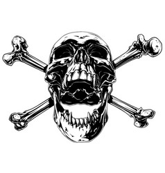 graphic realistic human skull with crossed bones vector image vector image