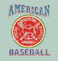 american baseball discipline vector image