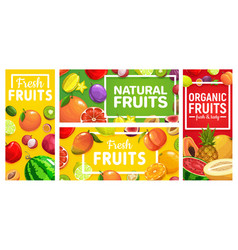 fruits food orange tropical pineapple farm apple vector image