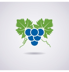 Icon of grapes vector