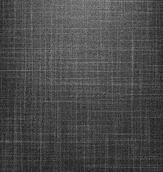 Black Jeans Texture vector image