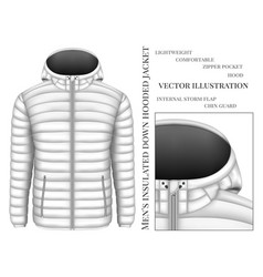 mens hooded insulated down vector image vector image