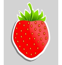 Strawberry Can be used as sticker vector image vector image