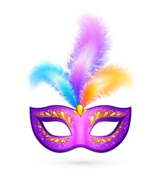 Violet carnival mask with feathers vector image