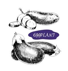 Eggplant vector image
