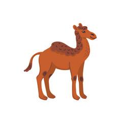 Extinct animals camelops western camel vector