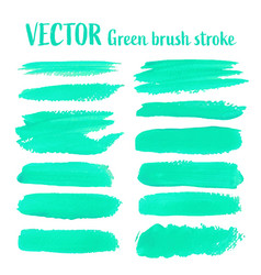 green brush stroke isolated on white background vector image