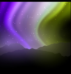 night landscape with northern lights sky vector image