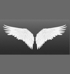 Realistic wings pair white isolated angel vector
