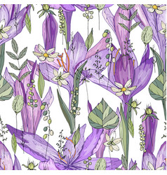 Seamless pattern with crocus and herbs endless vector