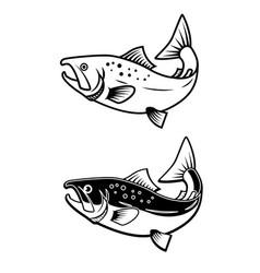 set salmon icons on white background design vector image