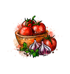 Tomatoes and garlic from a splash watercolor vector