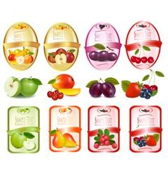 fruit labels vector image vector image