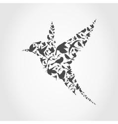 Birdie9 vector