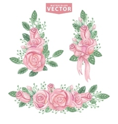 Watercolor pink roses compositionsCute vintage vector image vector image