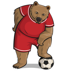 Bear athlete stepped foot on soccer ball vector