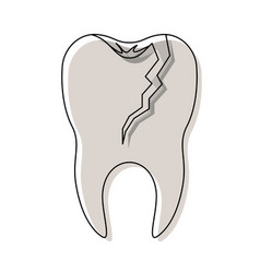 Broken tooth with root in watercolor silhouette vector