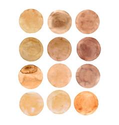 brown circle vector image
