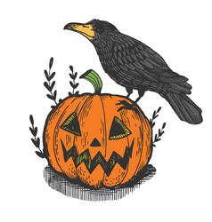 crow and pumpkin engraving vector image