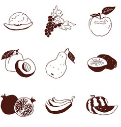 doodles fruit small selection on white background vector image