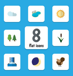 Flat icon nature set of forest bird solar and vector