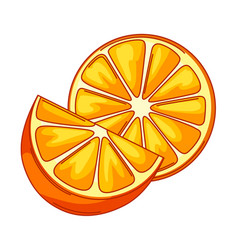 Oranges whole and slices vector
