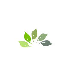 Organic green leaf logo vector