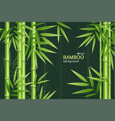 realistic 3d detailed bamboo chinese green plant vector image