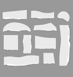 ripped notes cut strip white papers collection vector image
