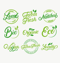 Set organic local farm farm fresh vector