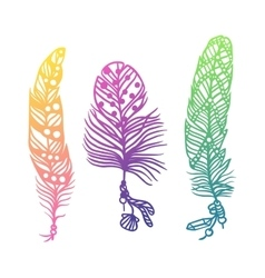 Tribal ethnic colorful feathers creative art vector
