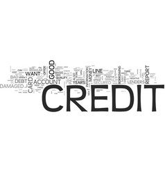 what happens when your credit is damaged text vector image vector image