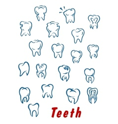 Teeth outline icons set vector image