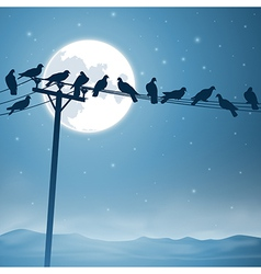 Birds on a Line vector image