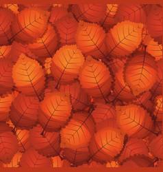 seamless autumn tree leaves vector image