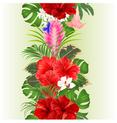 Seamless border bouquet with tropical flowers vector