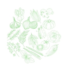 Set Of Vegetables Hand Drawn Artistic Sketch vector image