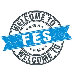 Welcome to fes blue round vintage stamp vector