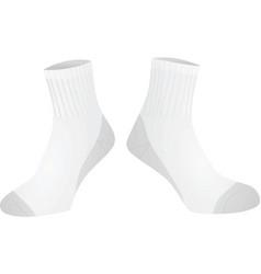 white socks vector image