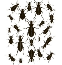 Set Bugs Silhouette vector image vector image