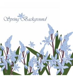 Spring Time Card with blue flowers vector image