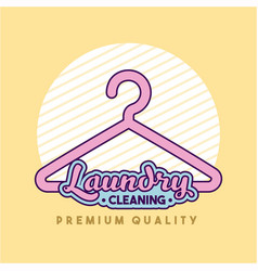 laundry cleaning delicate vector image