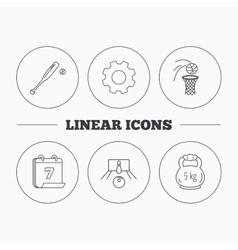 Baseball bowling and basketball icons vector