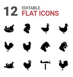 Cockerel icons vector