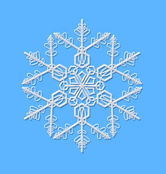 delicate beautiful white snowflake on blue vector image